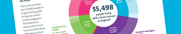 download the brain tumour infographic